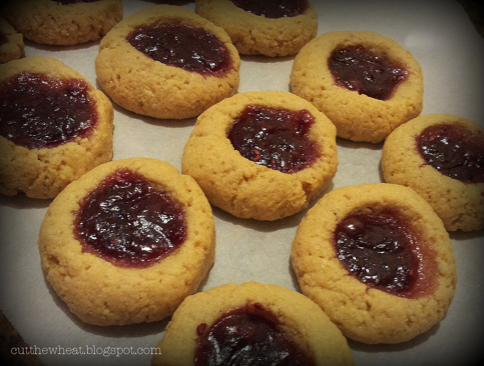Lunch Box Cookies (Peanut Butter & Jelly Thumbprints): grain free ...