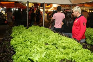 Exposição de hortaliças na Feport