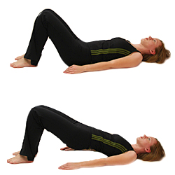 Pilates Pilates Exercise Pelvic Curl