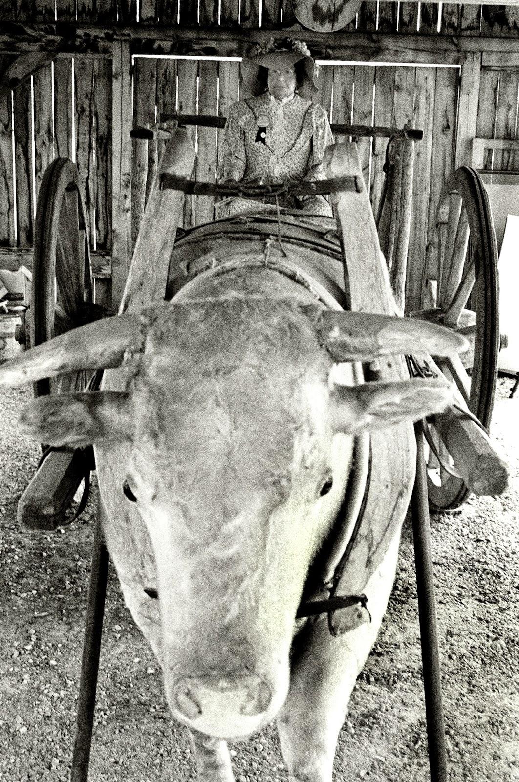 Ox Cart House