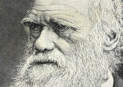 What if Darwin was Wrong?