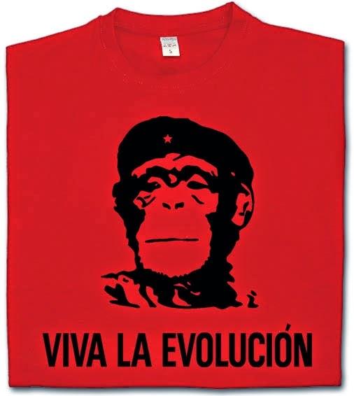 http://www.miyagi.es/camisetas-de-chico/camiseta-viva-la-evolucion