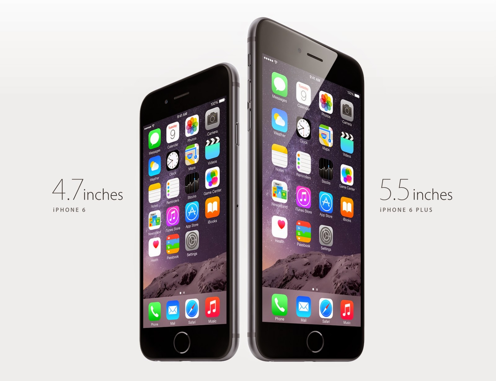 iPhone 6 or iPhone 6 Plus