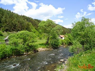 Valea Toplitei