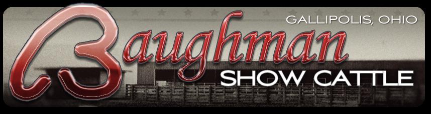 Baughman Show Cattle