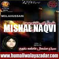 http://ishqehaider.blogspot.com/2013/11/mishal-naqvi-nohay-2014.html