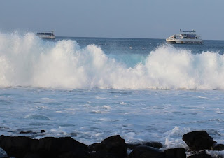 Part of the Kona Ironman World Championship swimming course. 2012