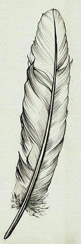 Feather tattoo stencil