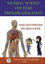 Food and nutrition. The human body