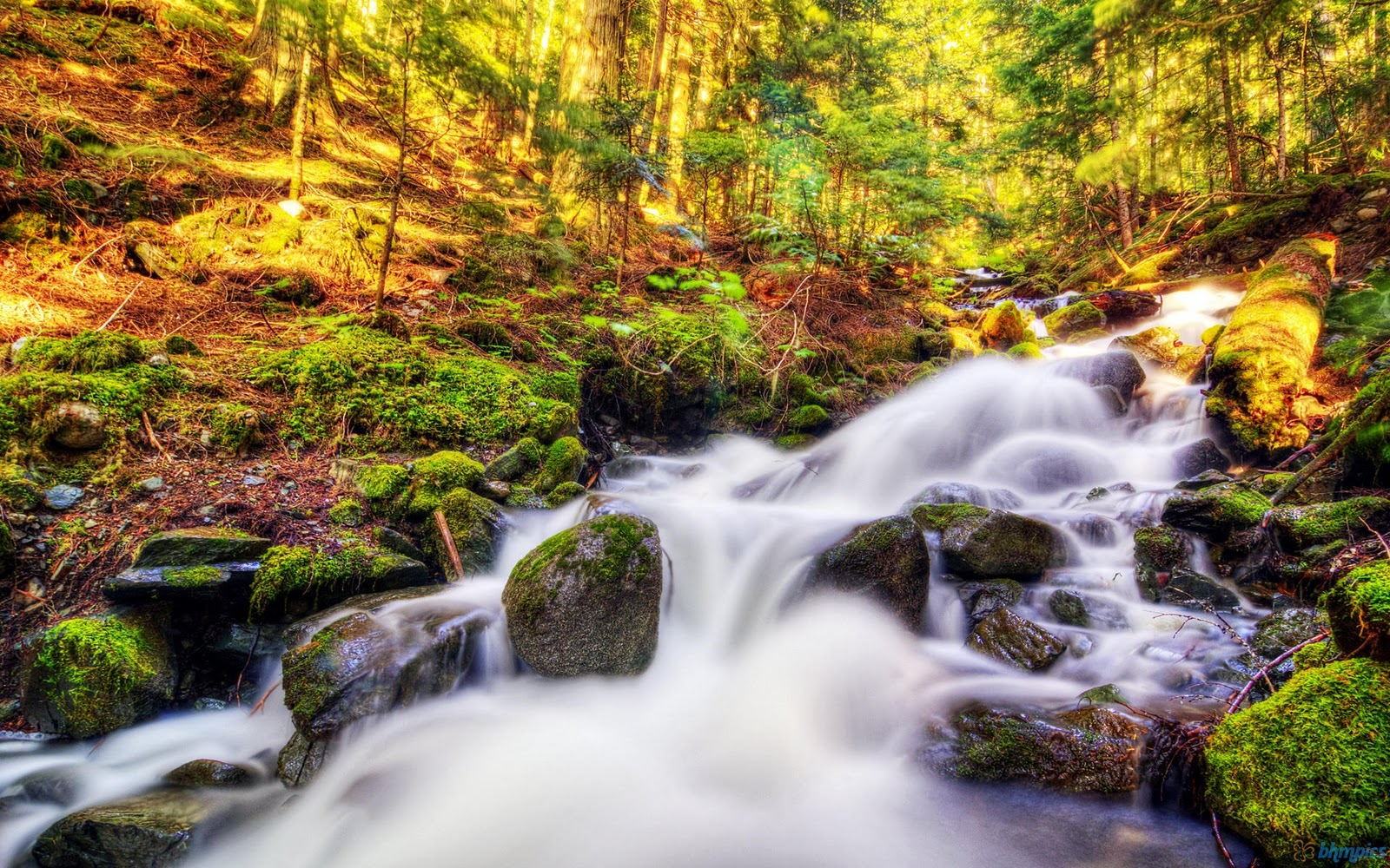 http://4.bp.blogspot.com/-9mfNd4UlqnE/TuhTcG9La3I/AAAAAAAAAp0/fToroLC2stA/s1600/water_fall_wallpaper-1920x1200.jpg