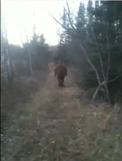 Minnesota Bigfoot Footage Hoax