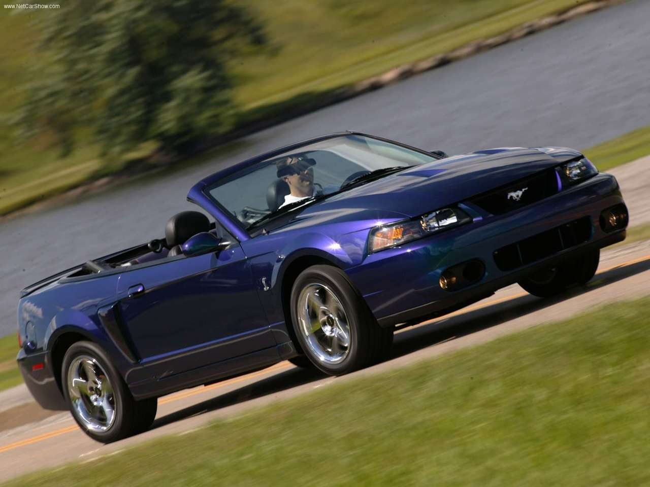 Ford   Populaire fran  ais dautomobiles  2004 Ford Mustang SVT