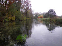 River Anton, tributary of the River Test