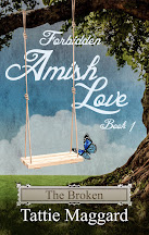 Forbidden Amish Love Series