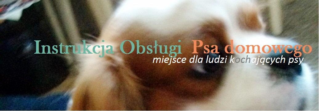 Instrukcja obsługi Psa domowego