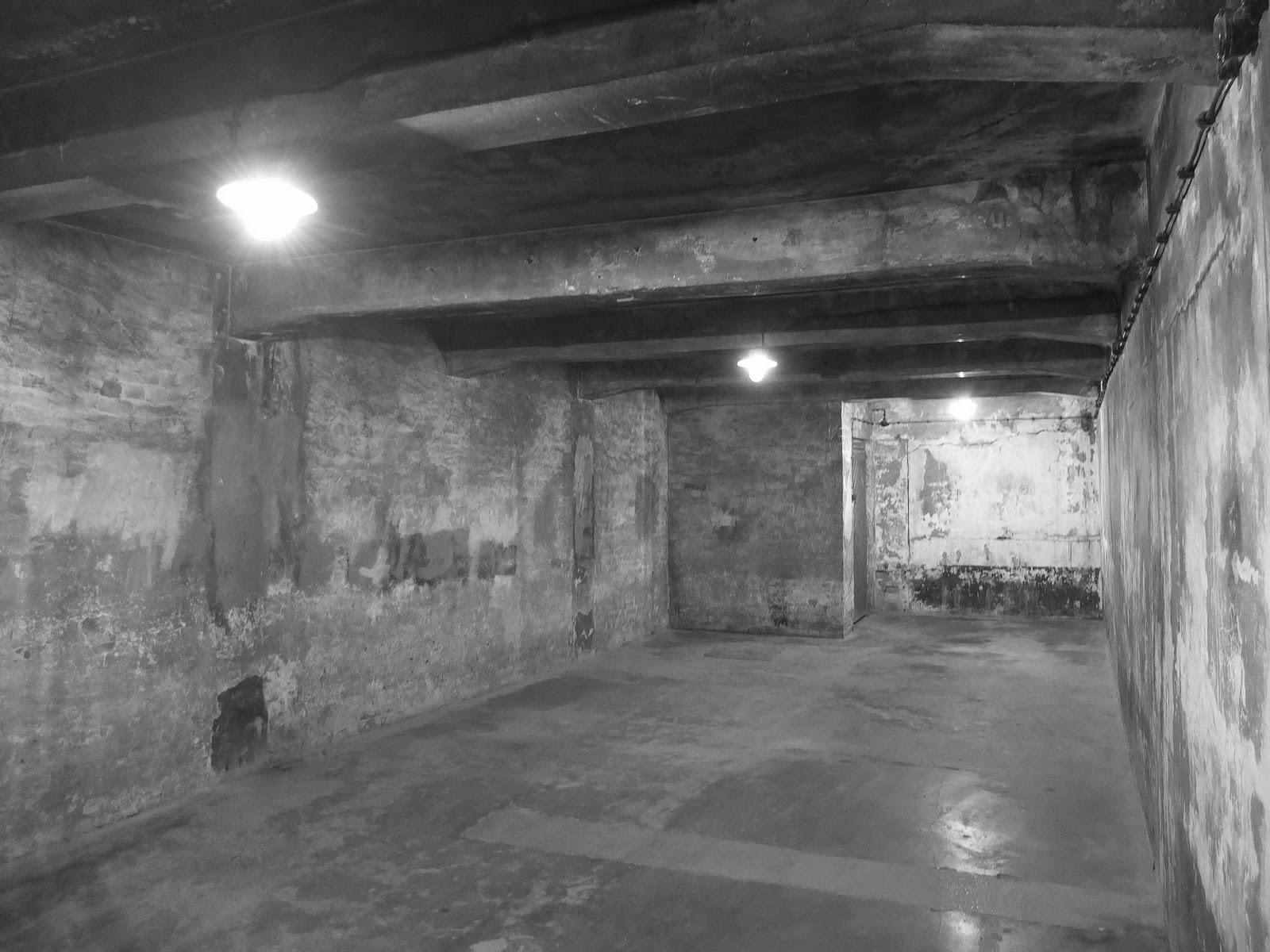 Regard s un t moignage du film shoah for Auschwitz chambre a gaz
