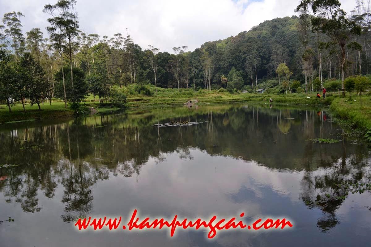 Kano Kampung Cai Rancaupas