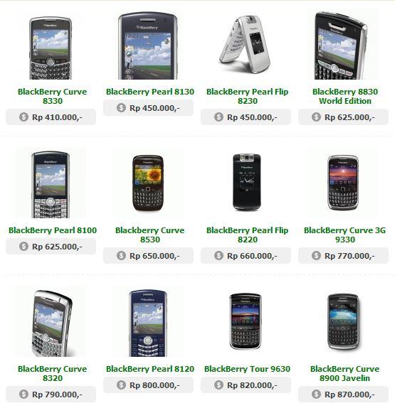 Harga Blackberry Berkualitas Mulai 1 Jutaan