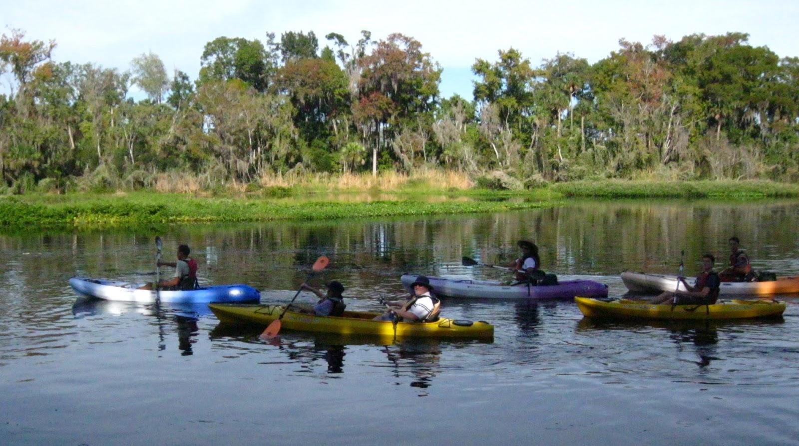 Wekiva River Monkeys on The Wekiva River