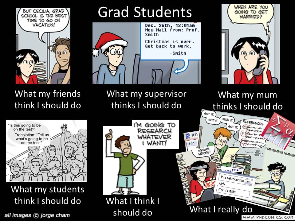 What do phd students do