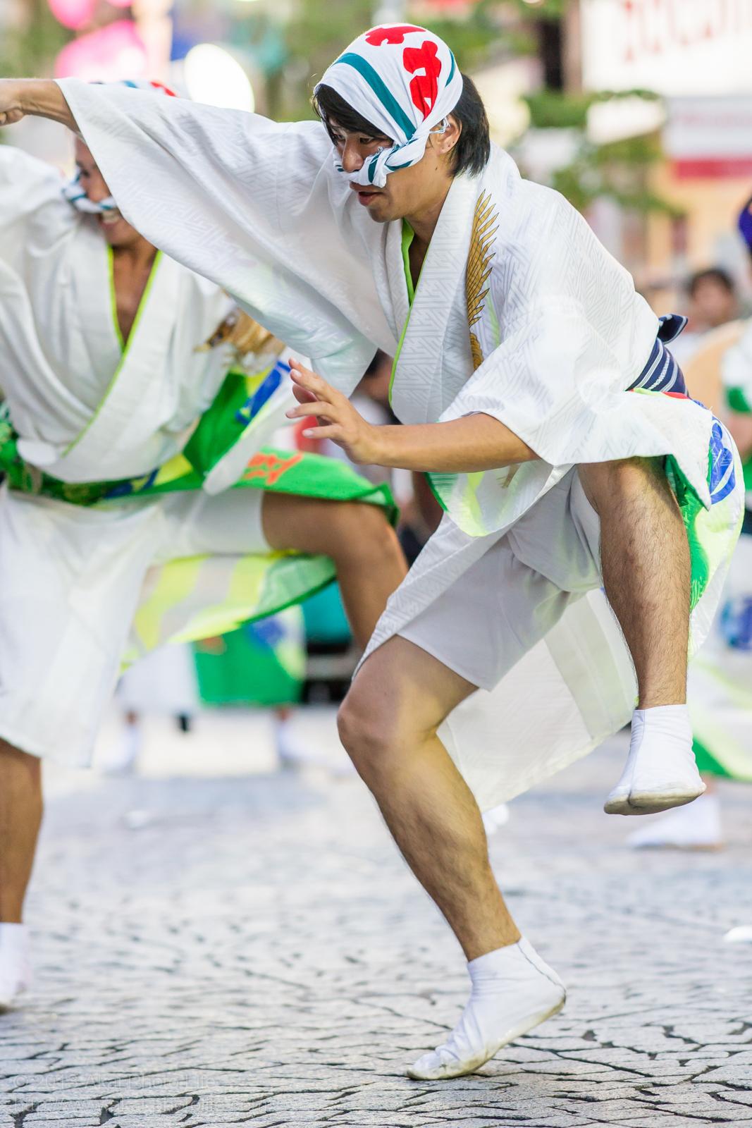 三鷹阿波踊り、みたか連の男踊り