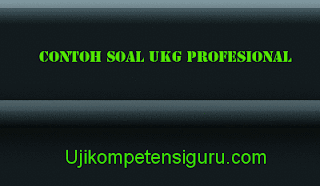 Contoh Soal UKG Profesional SD, SDLB, TK, SMP, SMA, dan SMK   Uji .