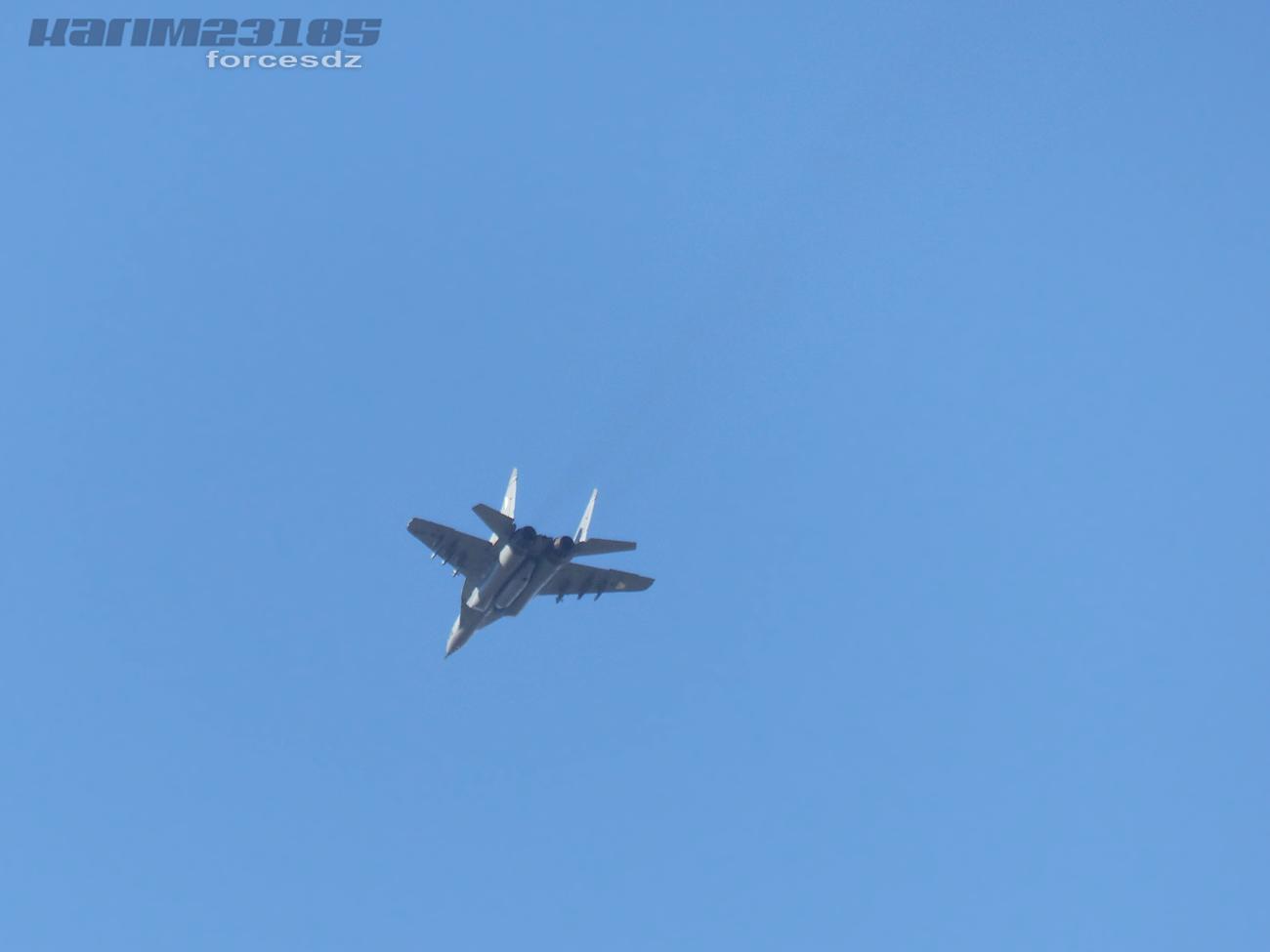 صور طائرات القوات الجوية الجزائرية  [ MIG-29S/UB / Fulcrum ] 7