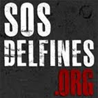 SOS Delfines: TU puedes ayudarlos