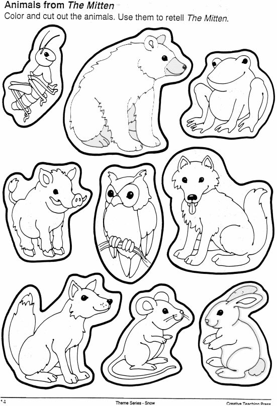 i am thankful for animals coloring pages - photo #46