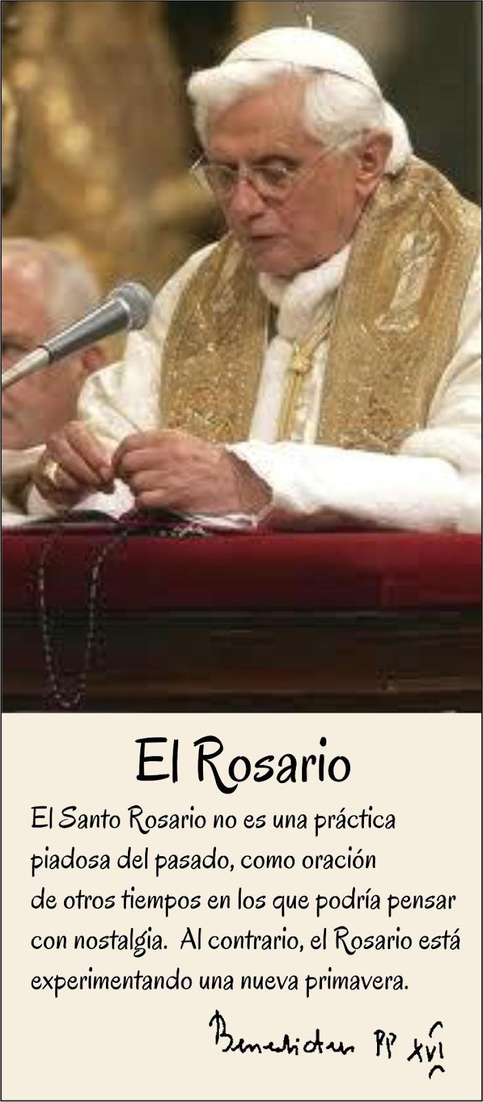 Papa Francisco | Noticias de Papa Francisco | El Comercio Peru