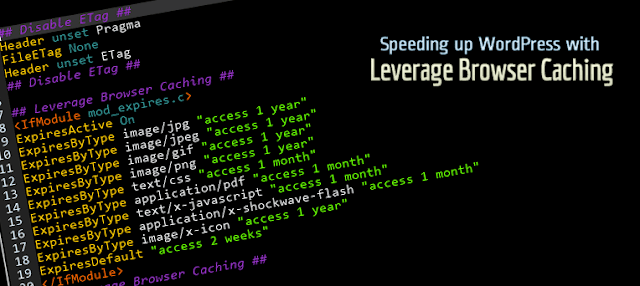 Speeding Up WordPress with Leverage Browser Caching - Wanna Apps