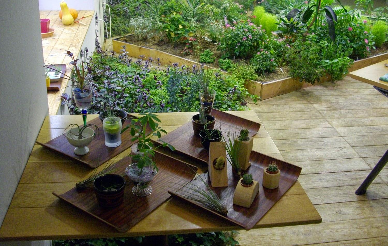 el aperitivo con las verduras del lugar