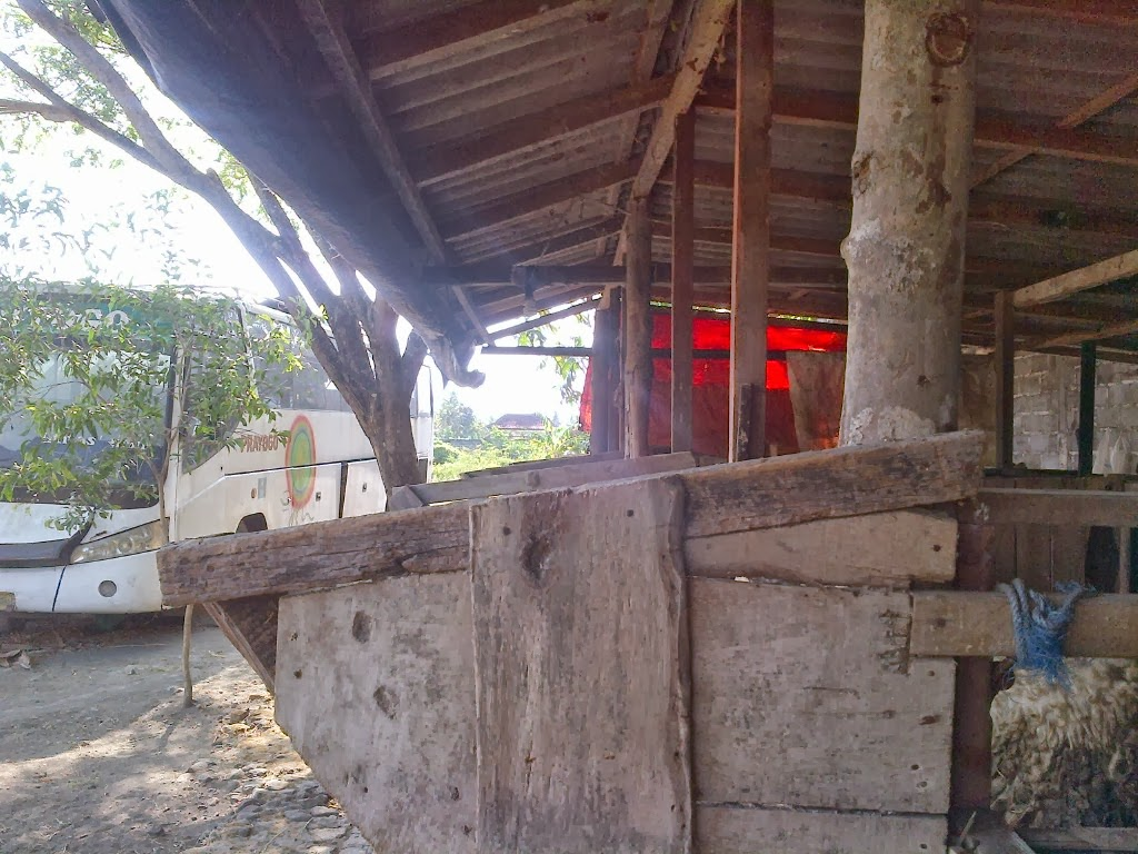 bentuk kandang panggung, kotoran dan air seni langsung terpisah