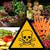 10 Alimentos que são altamente tóxicos para o Corpo Humano.
