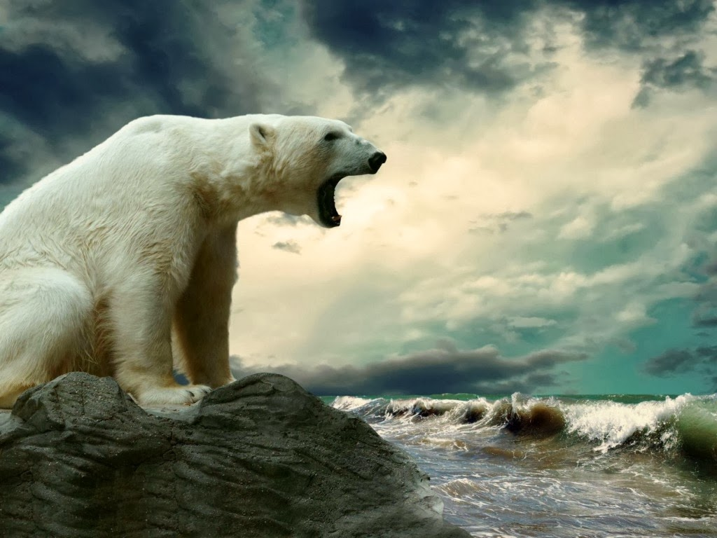 "<img src=""http://4.bp.blogspot.com/-9r0yXBh9Ahc/UtuqGCvNORI/AAAAAAAAI-Y/pd-e3OzFdpc/s1600/angry bear.jpeg"" alt=""angry bear"" />"