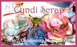 Cyndi's Blog!