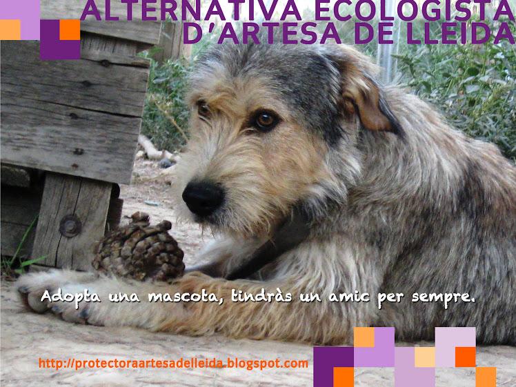 Alternativa Ecologista d'Artesa de Lleida