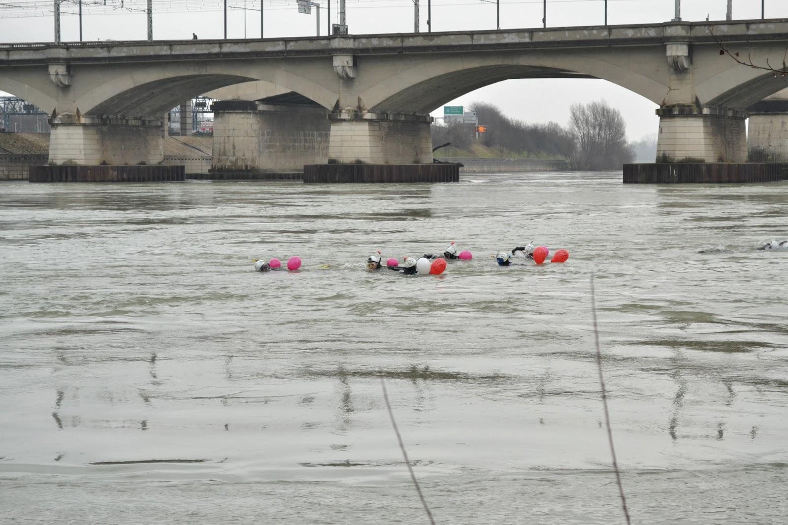 Traversée de Lyon nage palmes 2014 rhône