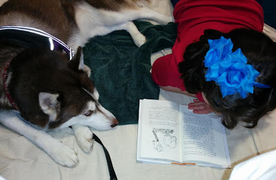 Therapy Dogs help kids build their reading skills