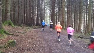 Born 2 Run Run Forest Run