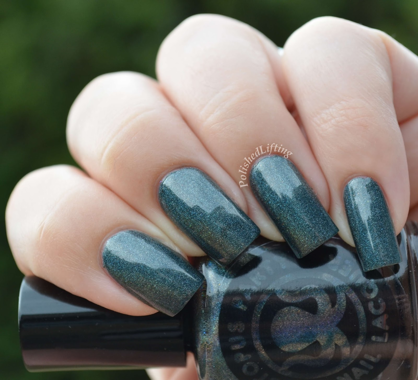 Octopus Party Nail Lacquer No Wane