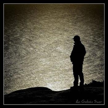 La soledad es la compañía que yo mismo elegí...
