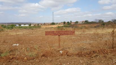 Vende-se terrenos - Loteamento pica-pau em Zabelê-PB