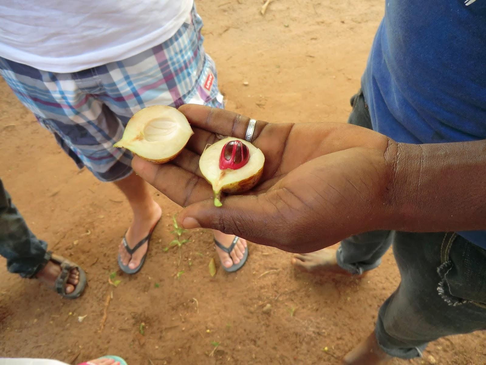 Aparador Madera Rustico ~ 365 dias por ai Tanz u00e2nia Zanzibar