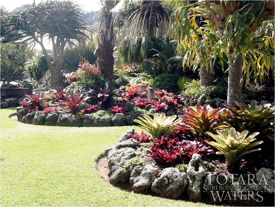Gardening south florida style bromeliads in the garden for Garden designs nz