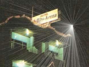 Hotel Mitra Arena
