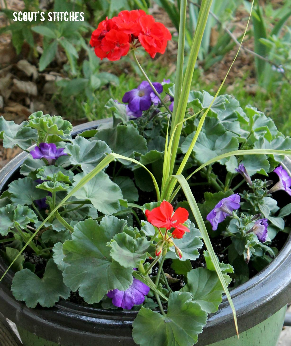 All the joy stretching potting soil how does your garden for Potting soil vs garden soil