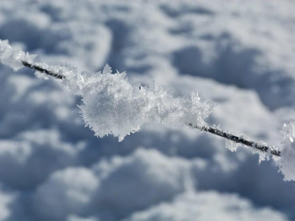 neige, cristaux, glace, hautes alpes, montagne