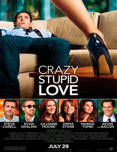 estupido y loco amor latino dating