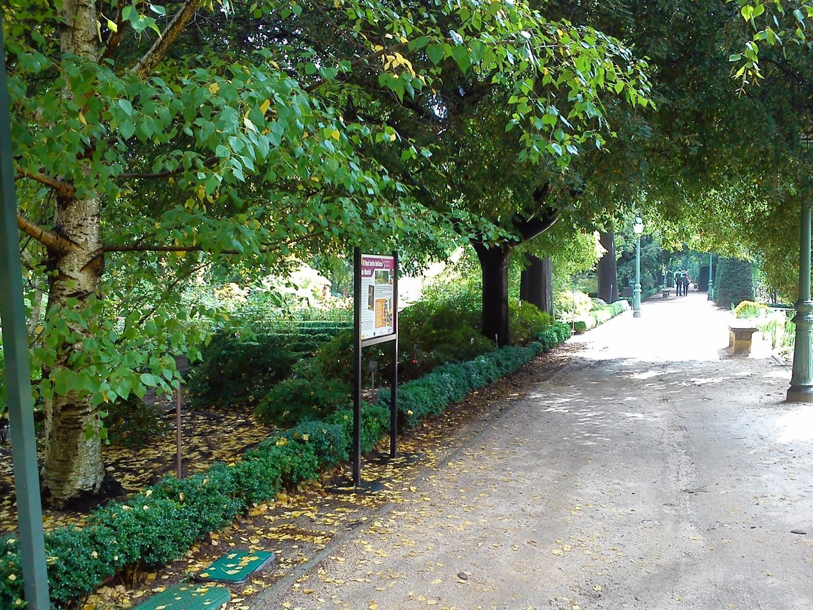 Por la calle de alcal real jard n bot nico de madrid ii for Calle jardines madrid